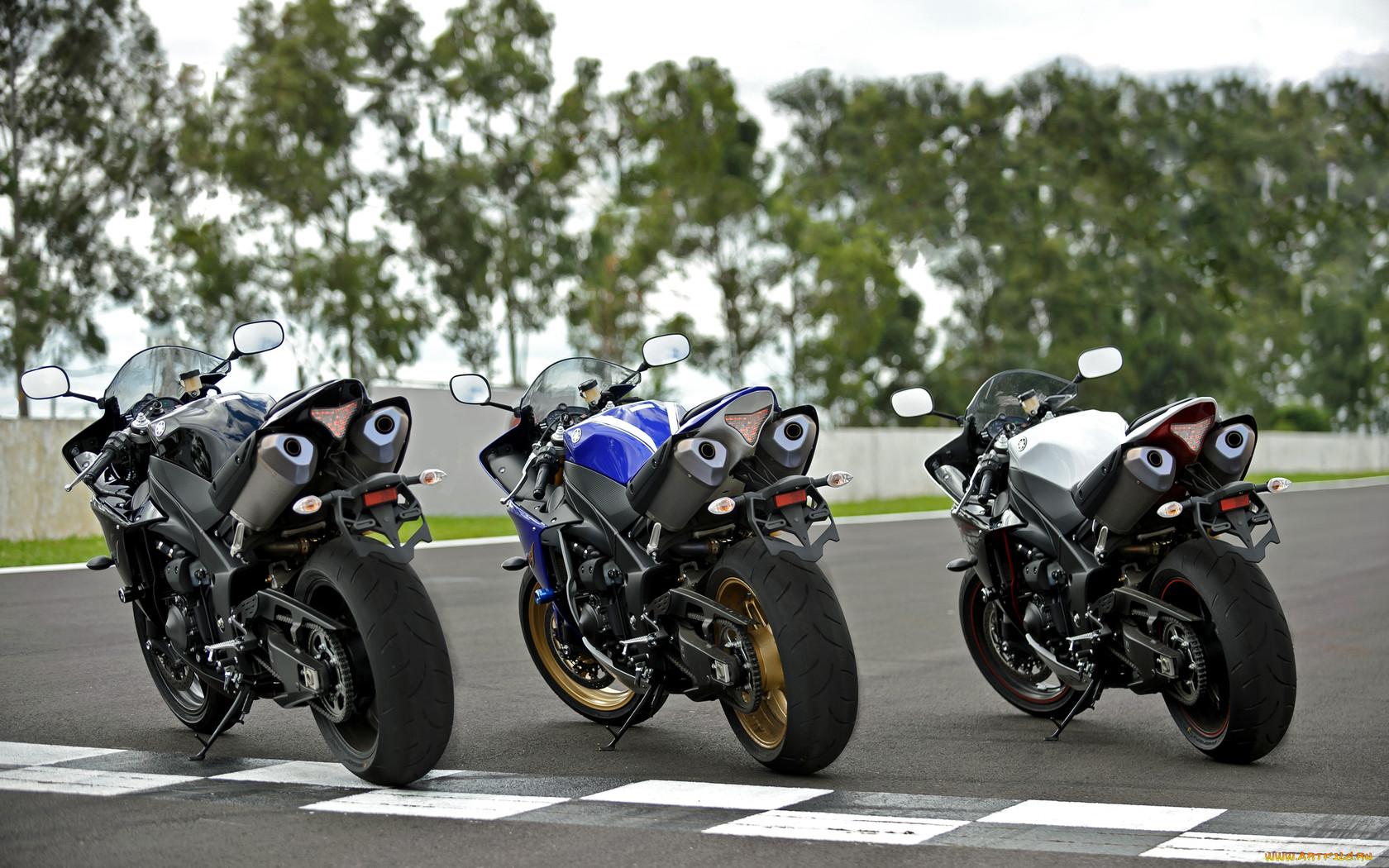 профессиональной много картинок с мотоциклами учительница муж женою